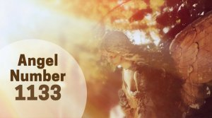 1133 Angel Number – Meaning related to New Opportunities